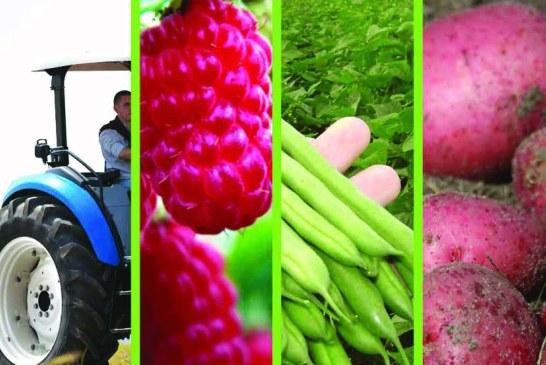 Agriculture du maghreb No 77 Juillet/Août 2014