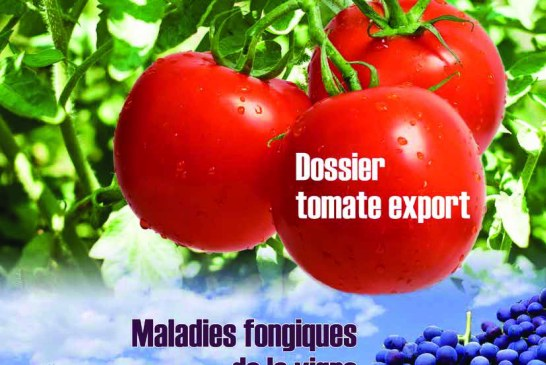 Agriculture du maghreb N° 83 Mars 2015