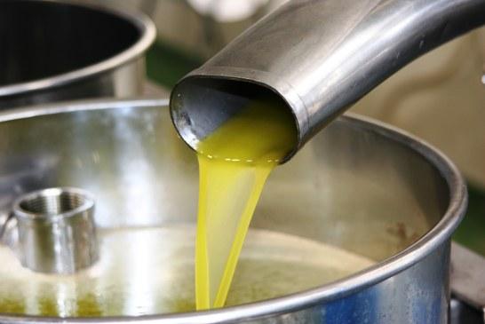 Qualité de l'huile d'olive