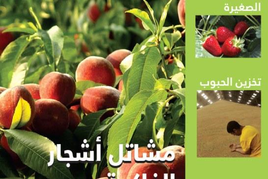 Cahier arabe N°87 juillet/aout 2015