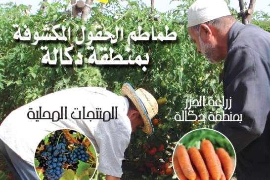 Cahier arabe N°78 Octobre 2014