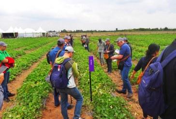 Rijk Zwaan :  Journées melon et pastèque à Marrakech