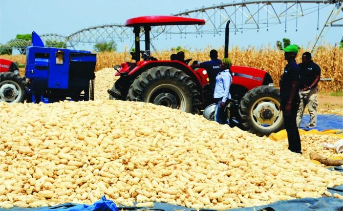 Case IH fait don de machines agricoles et de stages de formation pour le développement d'une agriculture durable au Ghana