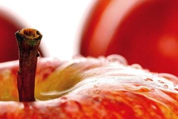 Pommes: Bonnes pratiques de récolte et préservation de la qualité