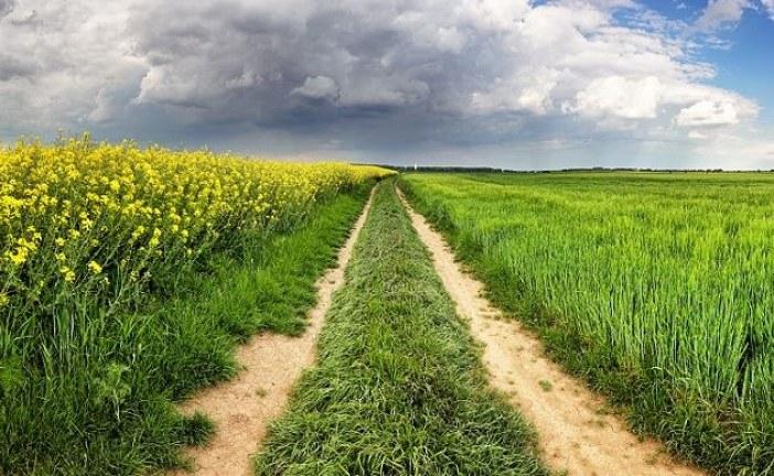 CHANGEMENT CLIMATIQUE : Comment l'anticiper ?