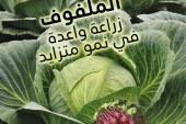115 supplément arabe – 115 ملحق العدد