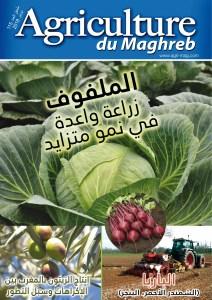 115 supplément arabe - 115 ملحق العدد