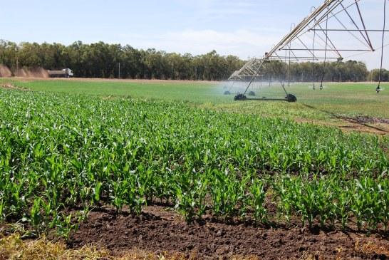 Valorisation de l'eau dans des exploitations de polyculture-élevage