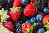 L'Association Marocaine des Producteurs des Fruits Rouges renouvèle son bureau