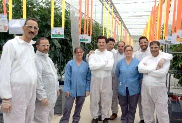 Une délégation marocaine en France pour les journées Tomates & Porte-greffes Seminis et De Ruiter.