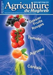123 Agriculture du Maghreb Nov 2019