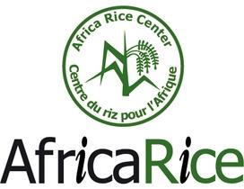africarice