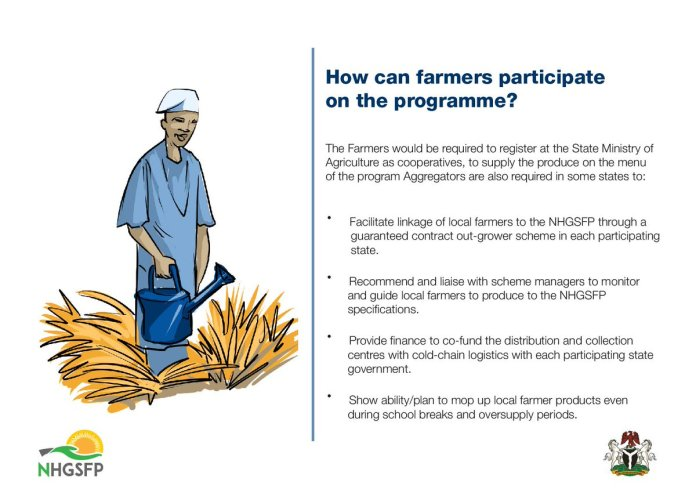 How Farmers/Non Farmers Can Participate In Nigeria Homegrown School Feeding Programme 1