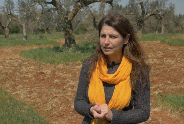 Margherita D'Amico davanti a una piantagione di ulivi