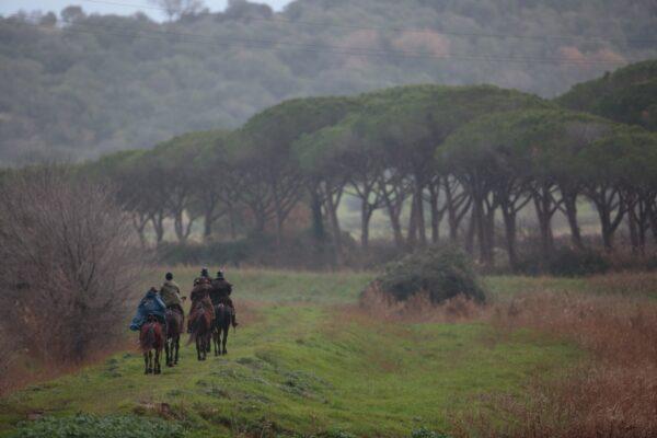 Un gruppo di persone a cavallo all'interno della Tenuta di Alberese
