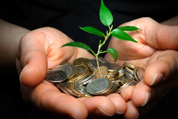publicado en el DOE la orden que aprueba un nuevo instrumento financiero para profesionales agrarios ya instalados