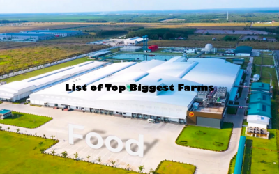 List of Top Biggest Farms in the World | Biggest Farm Ever