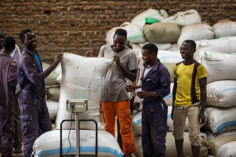 The dispatch team, bagging, weighing and preparing coffee for export.
