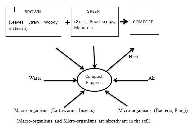 Compost Happens Flow Chart
