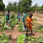 I Cuochi dell'Alleanza Slow Food  insieme per realizzare un Orto in Africa