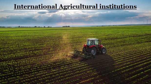 International Agricultural institutions