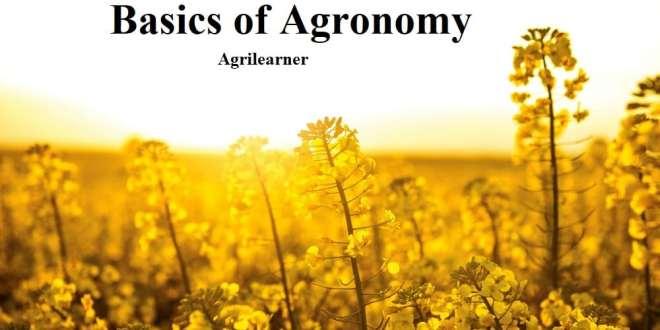 Basics of Agronomy