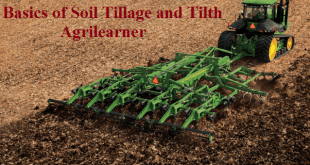 Soil Tillage and Tilth
