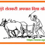 गोपीनाथ मुंडे शेतकरी अपघात विमा योजना वरदान