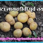 बटाटा लागवडीची पूर्व तयारी