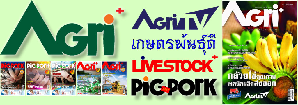 AGRI TV ข่าวเกษตรอัพเดทก่อนใคร เกษตรพันธุ์ดี อะกรีพลัสนิวส์ www.agriplusnews.com We provide agricultural business think your ideas. Thai Agriculture is the world's Kitchen.