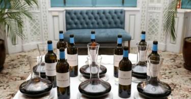 Wine & Executive Club - mesa vinhos - Vida Rural