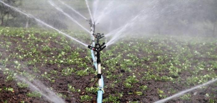 Évora discute desafios da água na sociedade portuguesa