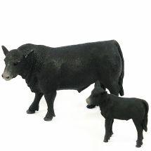 Angus -farm Animal Toys