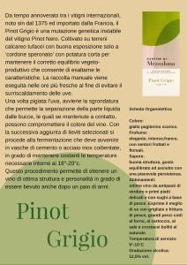 Scheda Pinot Grigio
