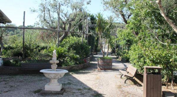 Agriturismo Piccolo Paradiso Amalfi Coast Sorrento Campania