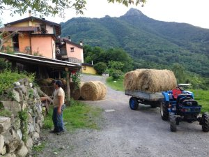 Al-Marnich - L'Attività Agrituristica