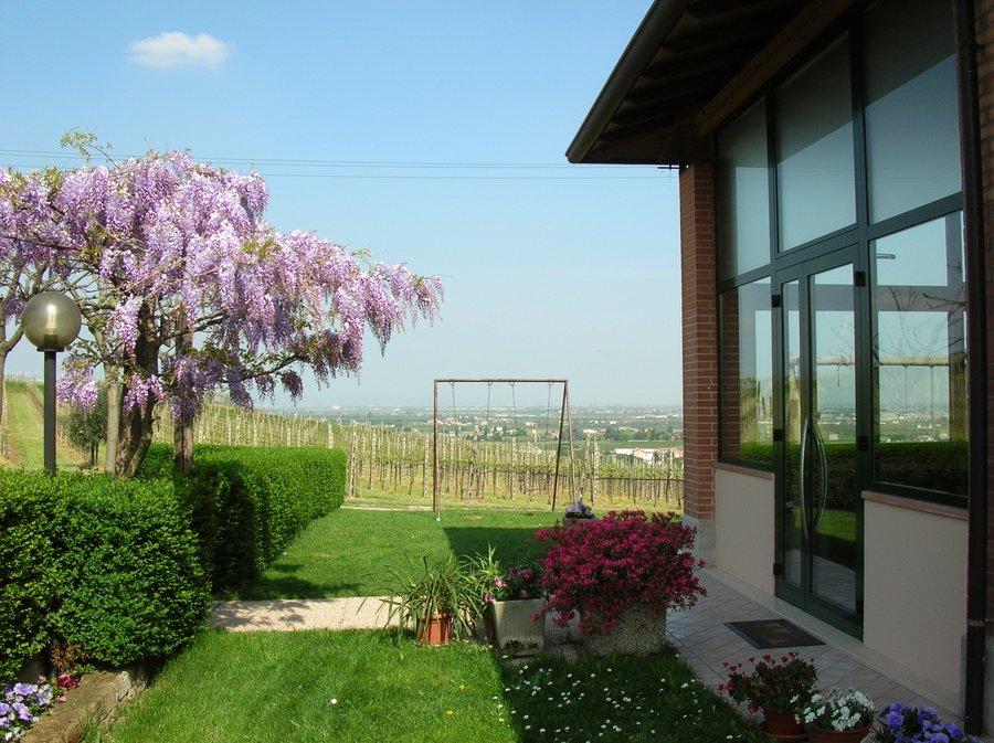 Agriturismo Le Bianchette a Sommacampagna  Custoza