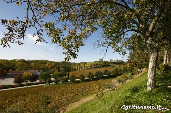 Agriturismo Relais Russiz Superiore Capriva del Friuli