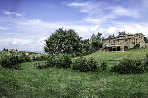 Agriturismo Il Selvatico a Cinigiano Poggi del Sasso
