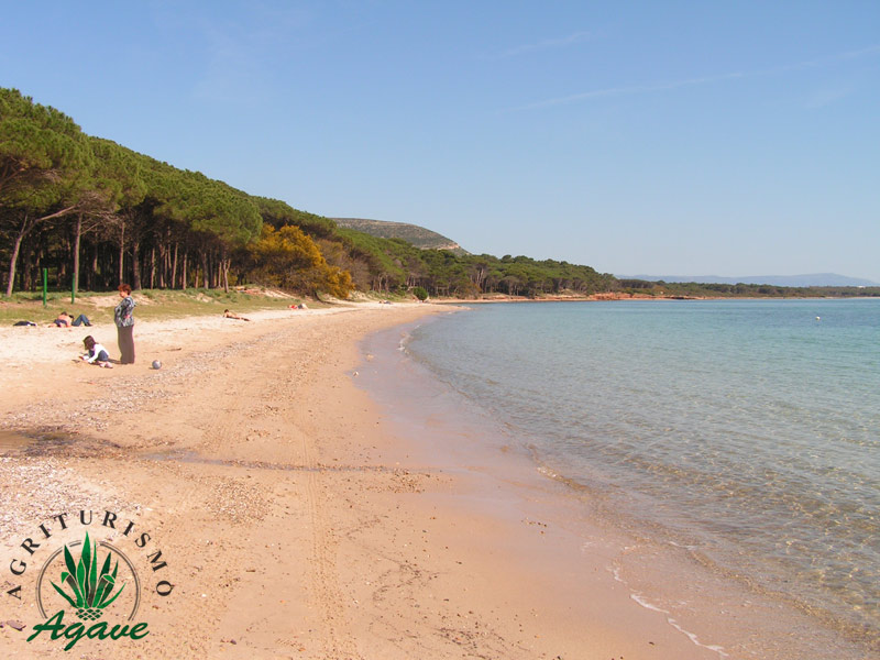 Spiagge di Alghero by Agriturismo Agave