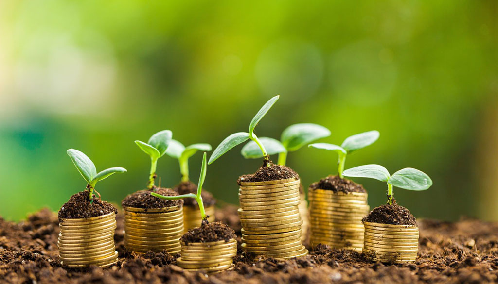 Agrifood Report 2030 Le prospettive dell'agroalimentare nel prossimo decennio Agronetwork La finanza per la crescita sostenibile: il tema dell'agrifood Seminario finanza sostenibile Milano 7 maggio 2018