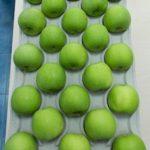 Izgled podloske za jabuku