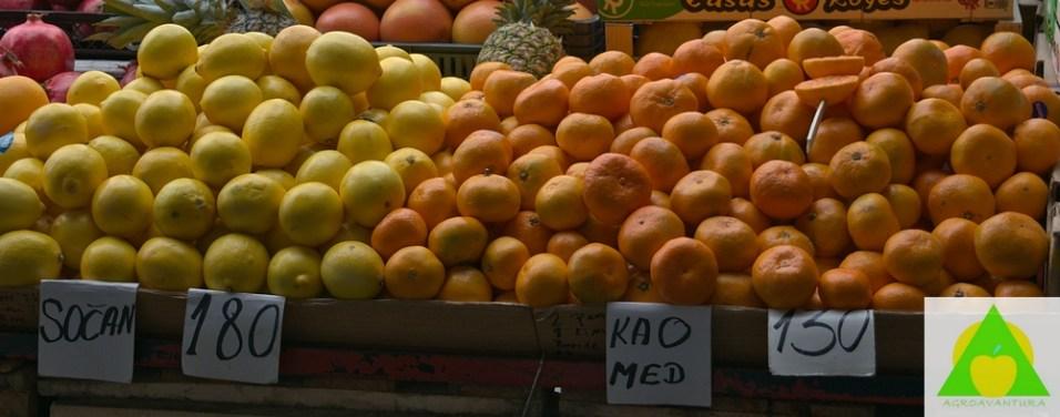 Kakav znacaj agrumi imaju u ljudskoj ishrani