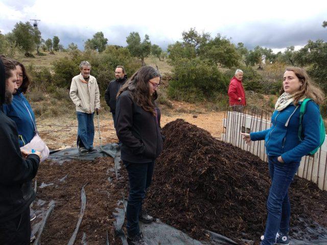 Compartiendo prácticas sobre agrocompostaje y cultivo de olivar ecológico