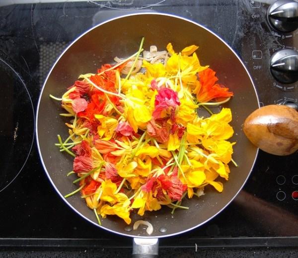 Flores y plantas silvestres comestibles
