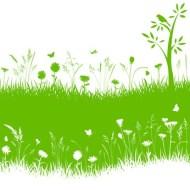La permacultura: ¿Es una nueva forma de vida?