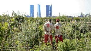 Visita a la Huerta de Montecarmelo: Huertos en Madrid