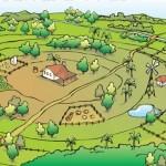 ¿Qué es la permacultura? Objetivos, Bases, técnicas y beneficios