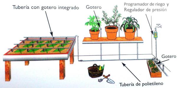 riego del huerto urbano en mesa de cultivo