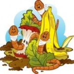 Compost de lombriz: qué es y cómo hacer humus de lombriz